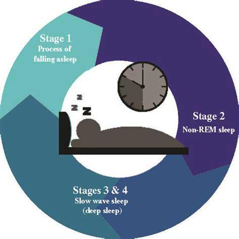 زمان بندی خوابیدن